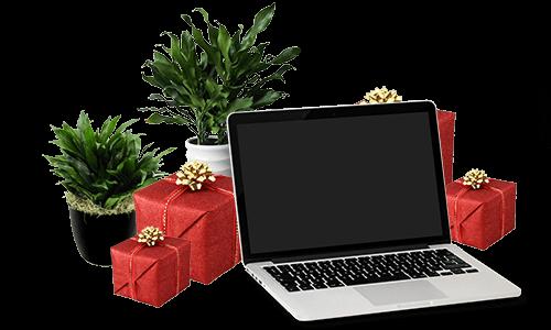 ajándék domain és tárhely
